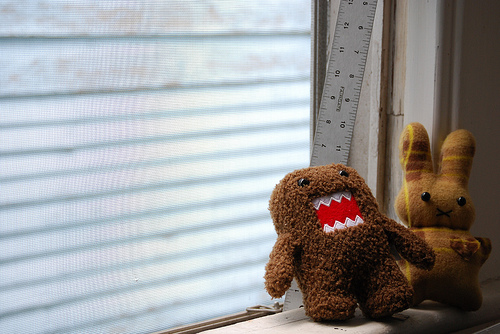 photo credit: domo and friend via photopin (license)